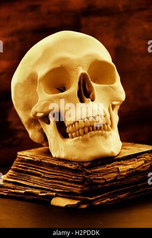 Menschlicher Schädel und altes Buch, Horror und Halloween Konzept - Stockfoto