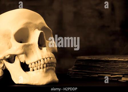 menschlicher Schädel und altes Buch - Stockfoto