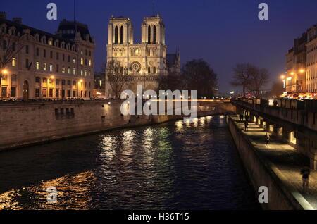Die Nachtansicht der Notre Dame Kathedrale mit Ufer im Vordergrund. Paris. Frankreich - Stockfoto