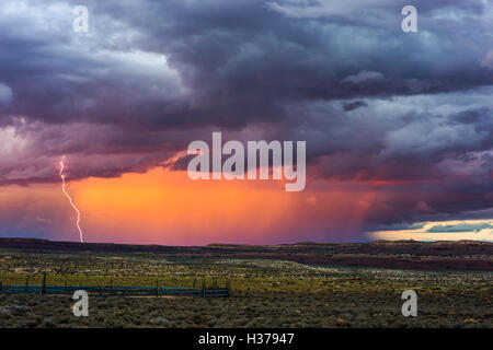 Sonnenuntergang Gewitter mit Blitz über dem Little Colorado River Valley, Arizona - Stockfoto