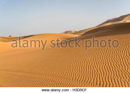 Sanddünen in der Erg Chebbi im Südosten Marokkos. - Stockfoto