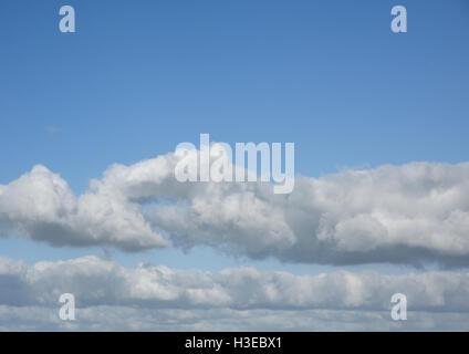 Cumulus-Wolken gegen blauen Himmel - Stockfoto