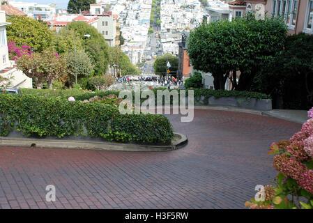 Lombard Street San Francisco USA - Stockfoto