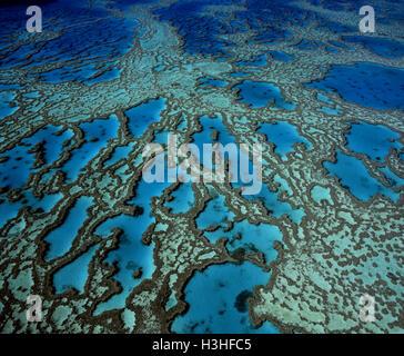 Hardy Reef Korallen-Formationen, - Stockfoto