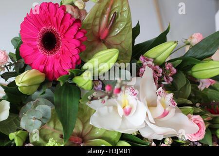 Rosa Blume sticht in einem Blumenstrauß. - Stockfoto