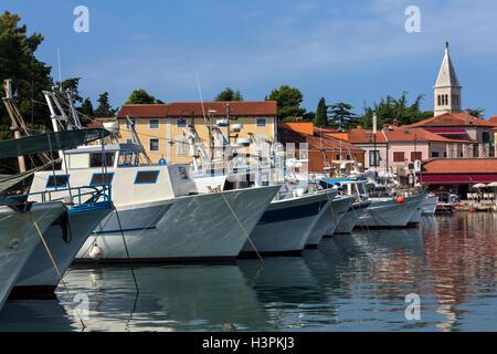Angelboote/Fischerboote im Hafen in der kleine Hafen von Novigrad an der Westküste der Halbinsel Istrien in Kroatien - Stockfoto