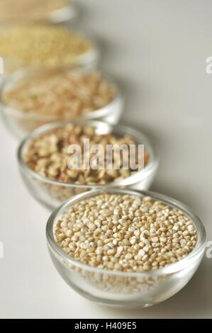 gluten freie teff korn hintergrund wichtiges nahrungsmittel getreide in thiopien und eritrea. Black Bedroom Furniture Sets. Home Design Ideas