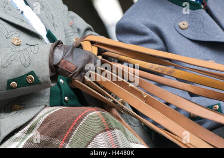 Kutscher, Hände, Zügel, Wagen und sechs, Nahaufnahme, Detail, - Stockfoto