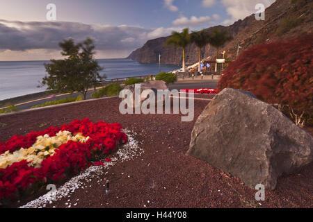 Spanien, Kanarische Inseln, Teneriffa, Acantilado de Los Gigantes, Rand der Straße, Blumenbeet, - Stockfoto