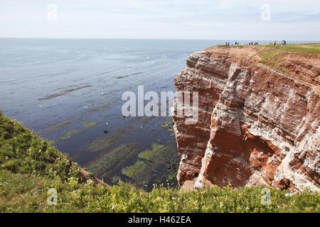 Deutschland, Schleswig-Holstein, Helgoland, Lummenfelsen, Felsen ...