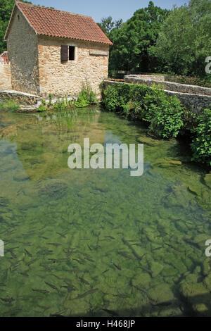 Kroatien, Dalmatien, Sibenik-Knin, Krka Nationalpark, Haus, Teich, Fische, - Stockfoto