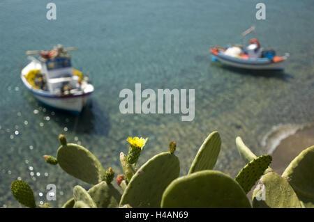 Griechenland, Kreta, Kato Zakros, Angelboote/Fischerboote und blühende Opuntien, - Stockfoto