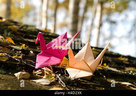 Zwei Origami-Kraniche in der Natur - Stockfoto