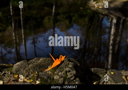 Orange Origami Kranich und Wasser Reflexionen - Stockfoto