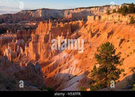 Sonnenaufgang und einen herrlichen Blick auf das Amphitheater, Bryce-Canyon-Nationalpark, Utah, gelegen im Südwesten - Stockfoto