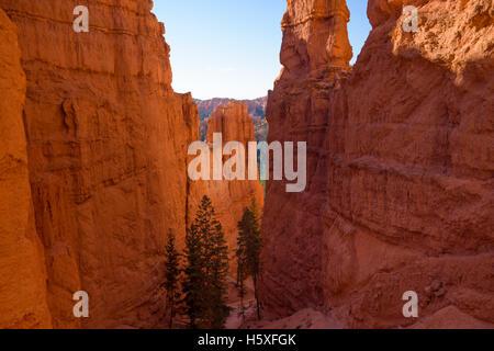 Wunderschöne Aussicht, Bryce-Canyon-Nationalpark, Utah, befindet sich im Südwesten der Vereinigten Staaten. - Stockfoto
