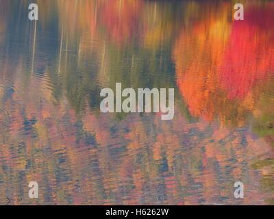 Buntes Herbstlaub der Nordosten der Vereinigten Staaten - Stockfoto