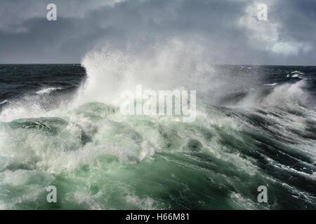 Meer-Welle im Pazifik bei Sturm - Stockfoto