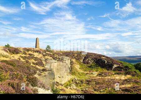 Captain Cook Denkmal auf Easby Moor, North York Moors National Park, England, UK - Stockfoto