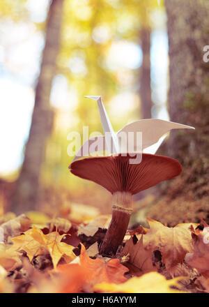 Origami Papier Kran sitzt auf einem Pilz draußen im Herbst Natur-Einstellungen - Stockfoto