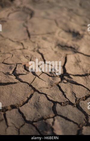 Mangelsymptomen Knacken eines Pools während Dürre - Stockfoto