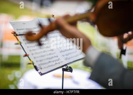 Männliche Geiger sein Instrument zu spielen und ein Notenblatt zu lesen, während ein outdoor-Sommer-Hochzeits-Zeremonie (flachen DOF, Farbe Stockfoto