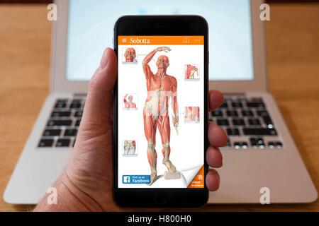 Verwenden iPhone Smartphone zum Bildungs-app Anatomie des ...