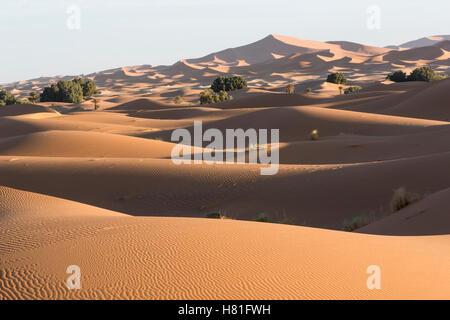 Marokko, Erg Chebbi Sanddünen in der Sahara-Wüste in der Nähe von Merzouga