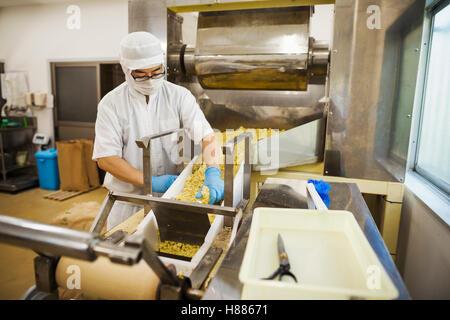 Arbeitnehmer mit Schürze und Hut mit blauen Handschuhen sammeln frisch geschnitten Soba-Nudeln aus dem Förderband. - Stockfoto
