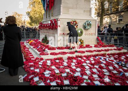 London, UK. 13. November 2016. Gedenktag Mohn Kränze am Ehrenmal in Whitehall Credit: Guy Corbishley/Alamy Live - Stockfoto
