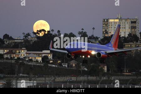 San Diego, Kalifornien, USA. 13. November 2016. Southwest Airlines Flug kommt in San Diegos Lindbergh Field als Ernte Super Mond im Osten aufgeht. © John Gastaldo/ZUMA Draht/Alamy Live-Nachrichten