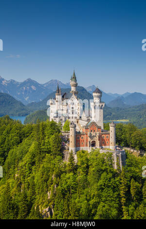 Klassische Ansicht des weltberühmten Schloss Neuschwanstein, einer der meist besuchten Burgen Europas, im Sommer, - Stockfoto