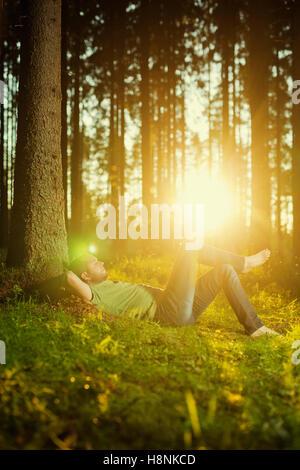 Mann schläft von Baum im Fichtenwald - Stockfoto