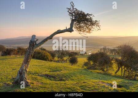 Blick auf das Cuckmere Tal im Morgengrauen. In der Nähe von Seaford, South Downs, East Sussex, England. Februar. - Stockfoto