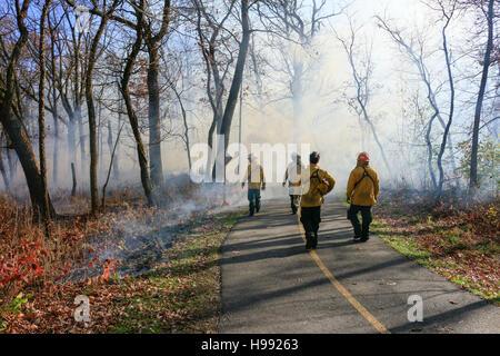 Salt Creek Natur Bereich, Illinois, USA. 20. November 2016. Waldarbeiter überwachen eine vorgeschriebene brennen - Stockfoto