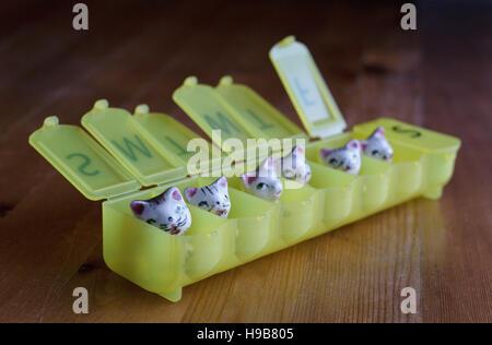Kleine Keramik Kätzchen in einem wöchentlichen Pillenbox. - Stockfoto