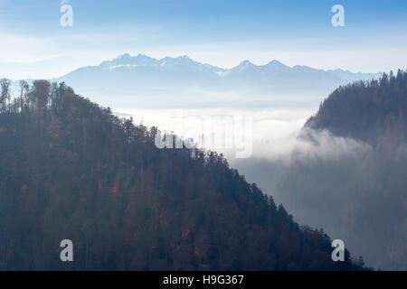 Nebligen Morgen in Bergen - Blick vom Sokolica Höhepunkt in Pieniny, Polen - Stockfoto