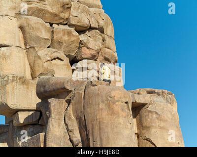 Restauratoren arbeiten auf die Kolosse von Memnon, Wächter, der Memorial Tempel von Amenophis III, West Bank, Luxor, - Stockfoto