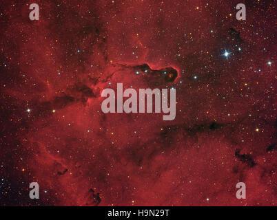 Elephant Trunk Nebel (IC 1396) im Sternbild Kepheus Stockfoto