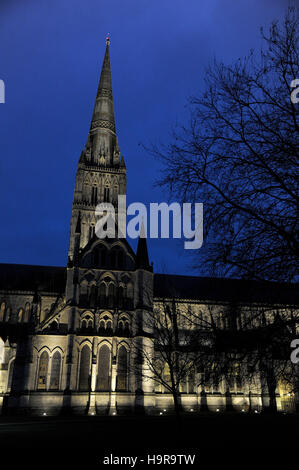 Kathedrale von Salisbury in der Nacht, Wiltshire, UK - Stockfoto