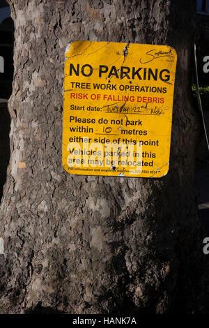 Detail einer Southwark Rates Zeichen an einer Platane, Warnung vor bevorstehenden Baum arbeiten am 28. November - Stockfoto