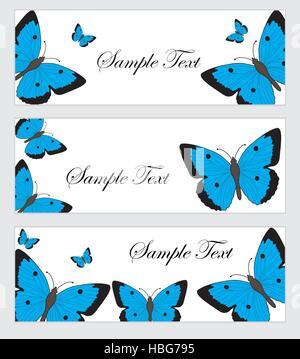 Set Schmetterlinge Banner. Banner-Vorlagen mit Schmetterlingen. Farbige Schmetterling Banner. Vektor-illustration - Stockfoto