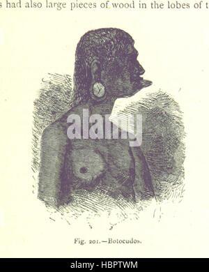"""Bild entnommen Seite 527 von """"[The Human Race, - Stockfoto"""