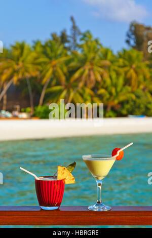 tropical bungalow, strand cocktail- und delphin. sommer reisen und urlaub vektor banner. sommer