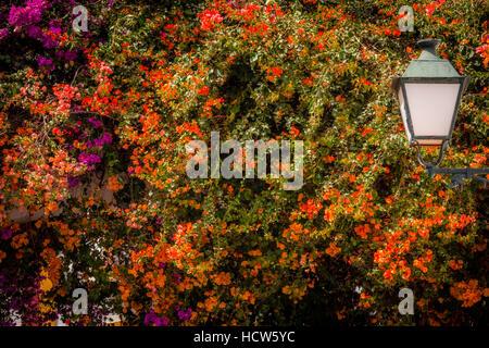 Straßenlaterne und bunte Blumen wachsen auf eines der Häuser in Puerto de Mogan, Grand Canaria, Spanien - Stockfoto