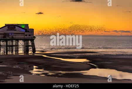 Blackpool sunset Beach Pier Stare schwärmen. Lancashire North West England. - Stockfoto
