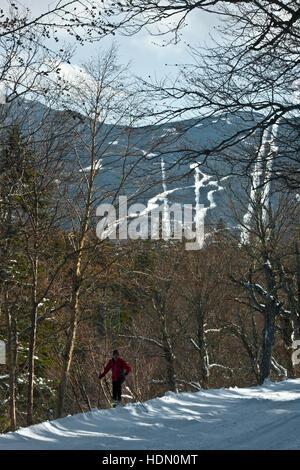 Mount Washington Valley, Pinkham Notch, New Hampshire, Great Glen Outdoor-Center, - Stockfoto