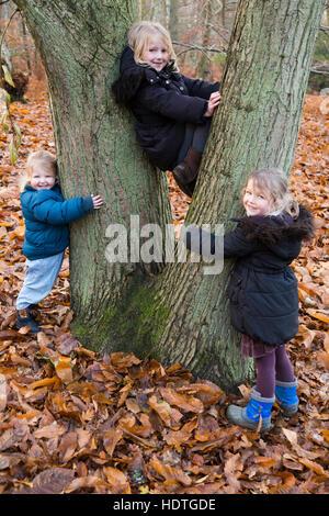 Drei Schwestern: Mädchen Alter 2 6 4 Jahre (zwei, sechs & vier Jahre alt) halten halten Klettern Klettern Baum spielen - Stockfoto