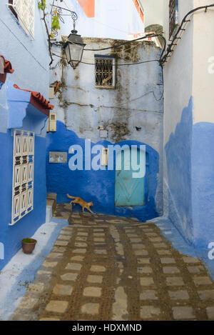 Straßen und Gassen der Medina von Meknes, Marokko