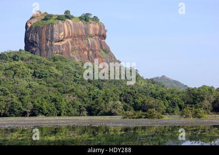 Lion Rock Sri Lanka - Stockfoto